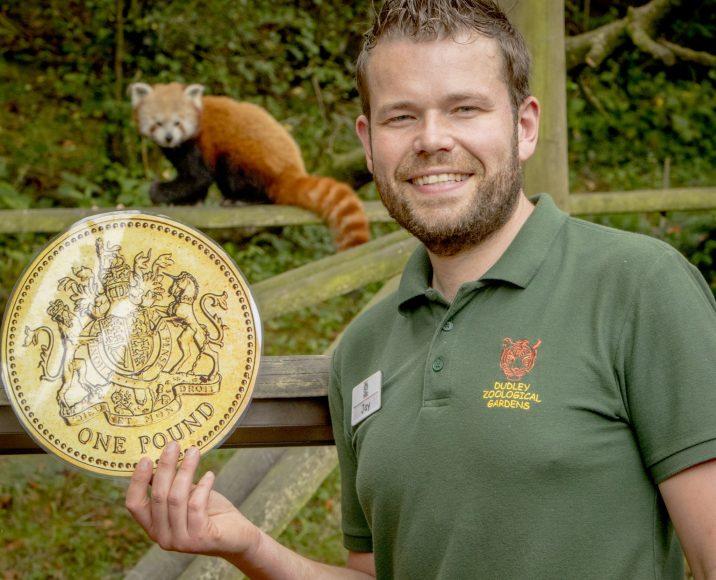 DZG Jay panda pound offer