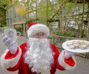 Join Santa for tea!