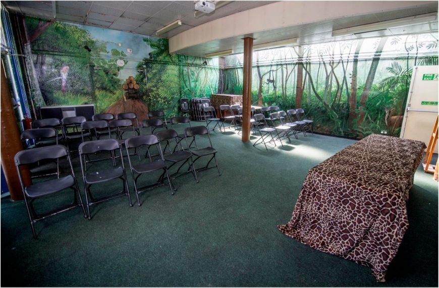 DZG rainforest room