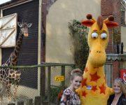 Hi Geoffrey!