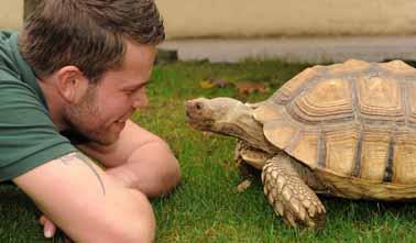 Speedy tortoise joins DZG