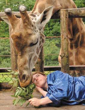 Wake up the Zoo!