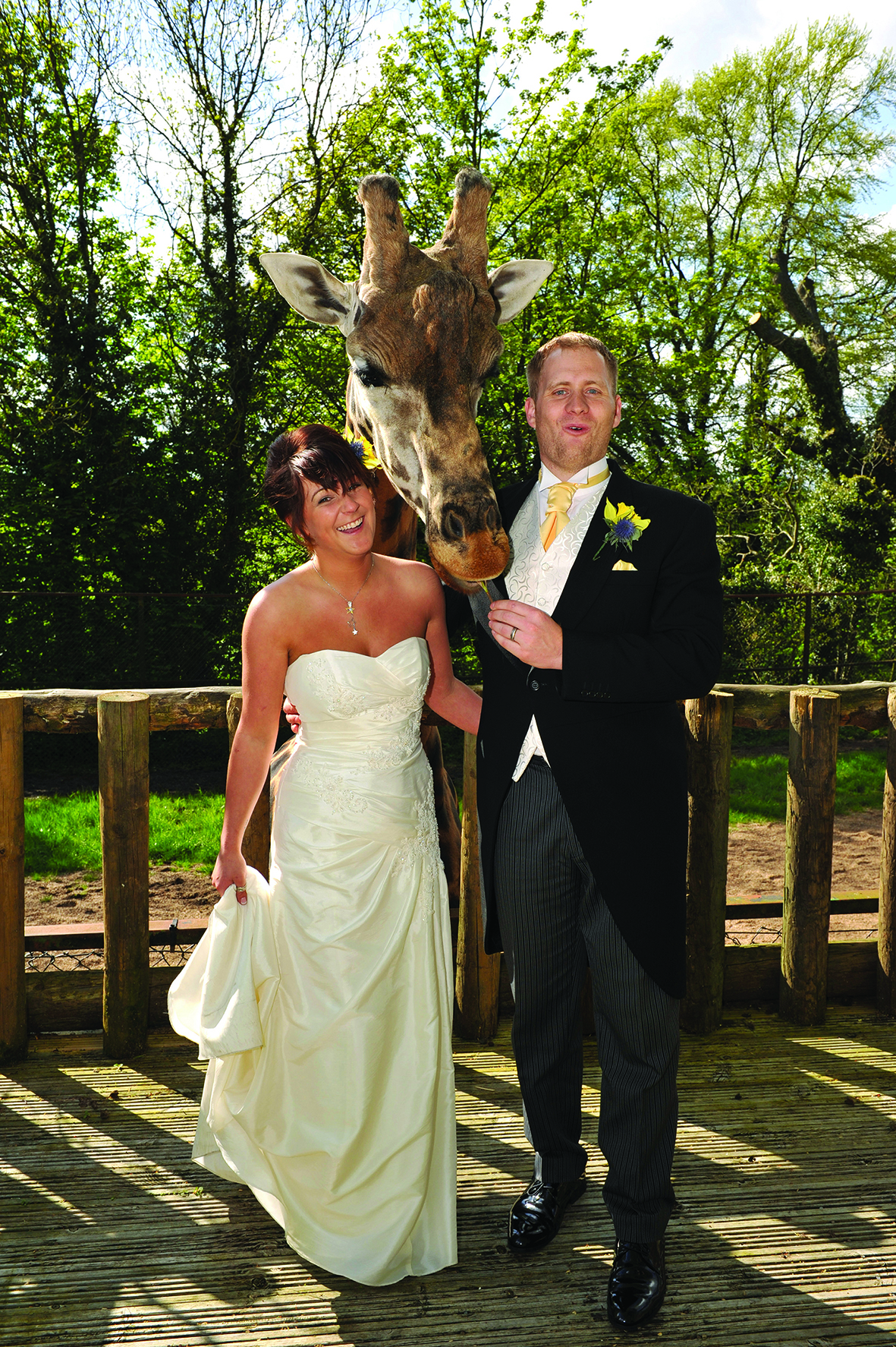 Wedding Dress Hire Dudley West Midlands - Wedding Dress Collections