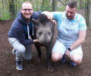 £450 for tapirs!