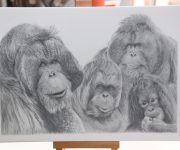 Exclusive ape art goes on sale