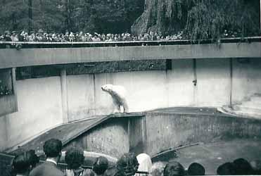 Jill-Zoo0003