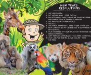 Zoo Year Resolutions