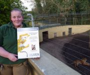 Recognition for tiger funds
