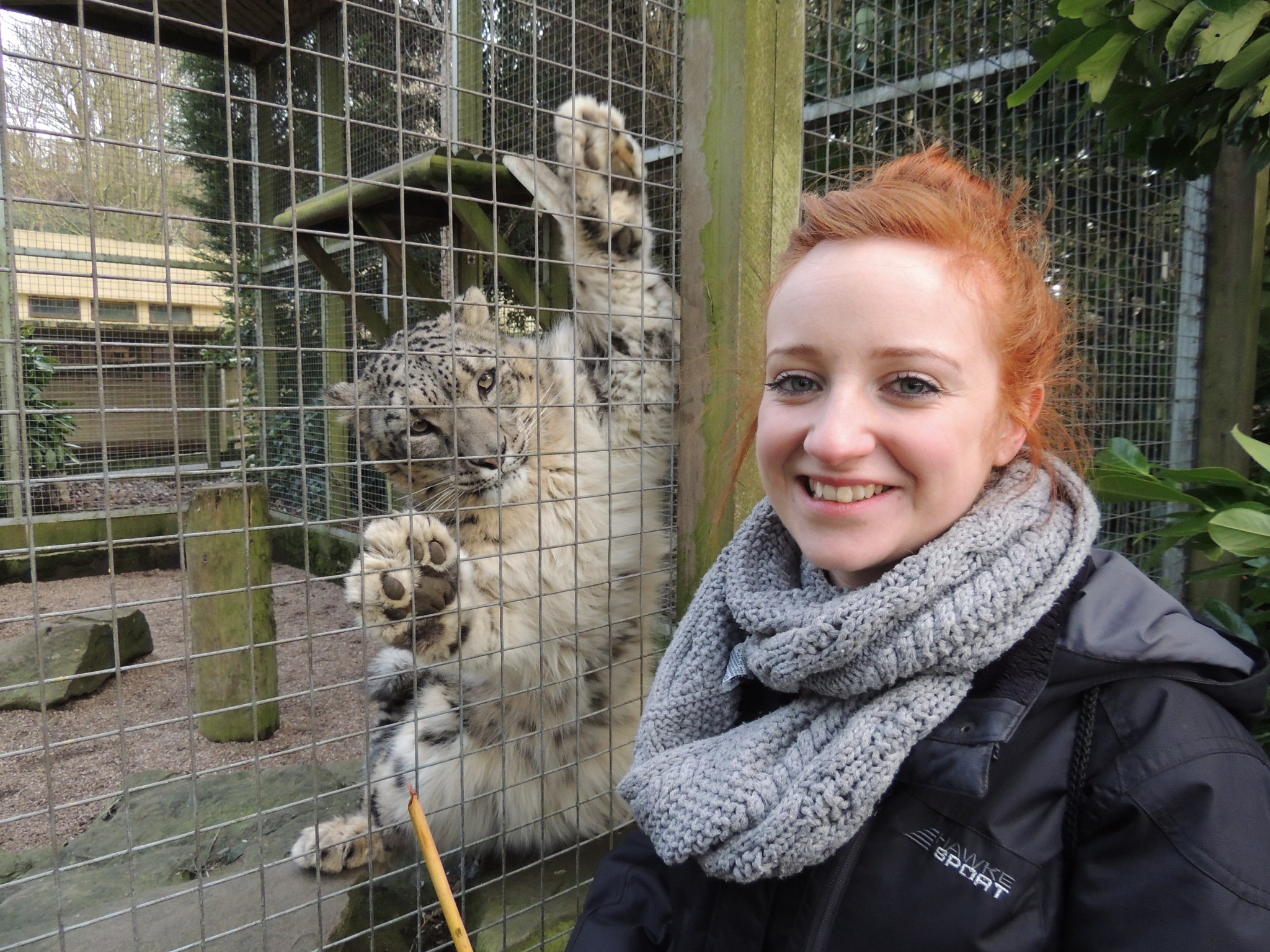 Zoo Keeper for a Day - Dudley Zoological Gardens