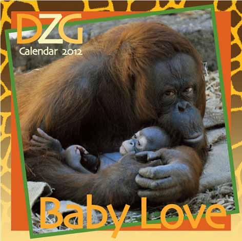 DZG's 2012 calendar on sale