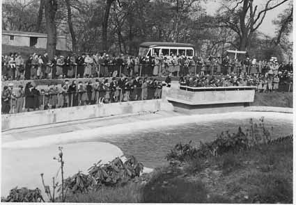 crowds-at-moat-show-1