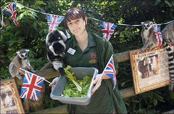 dudley_zoo_bff_5