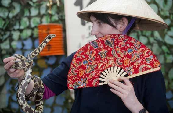 dzg_chinese_snake3_web