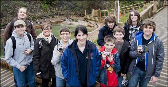dzg_coseley_school_penguins5
