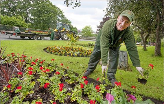 dzg_gardeners_planting_2_web