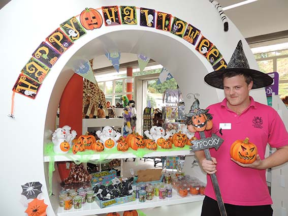 dzg_halloween_crop_9_0