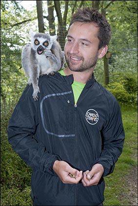 dzg_tennis_lemurs_2