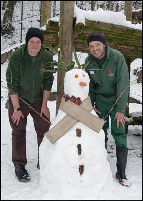 dzg_tiger_snowman10