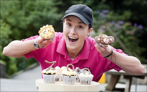 dzg_zoo_cupcakes_1