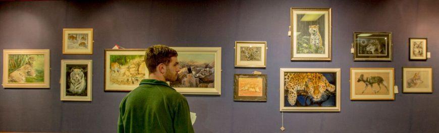 DZG art gallery 1