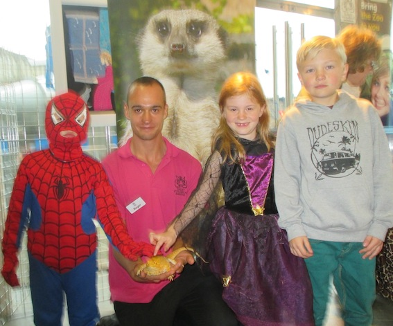 web_ethan_age_8_issac_age_5_-_spiderman_and_millie_dawes_age_7_-_witch