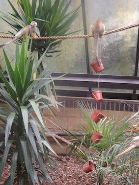 web_plant_pot2